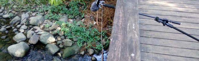 New free sound effects: waterfalls and creeks