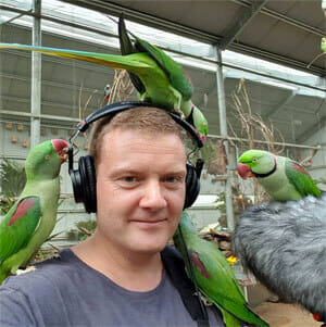 Birds eating headphones